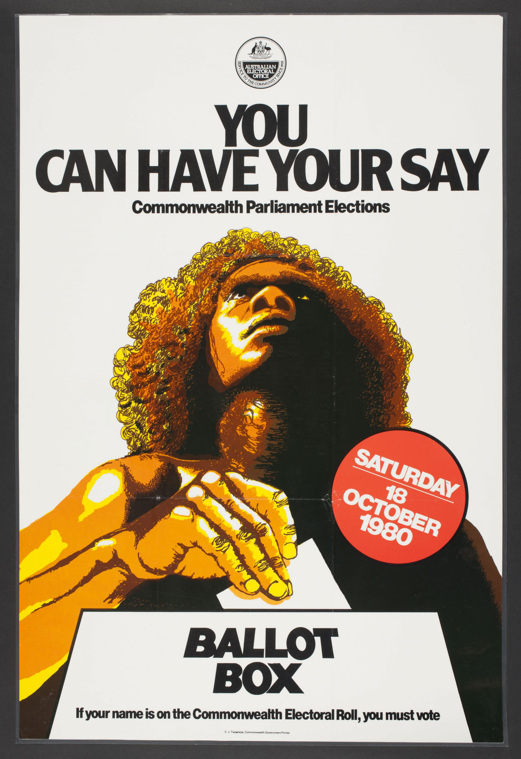 You can have your say poster