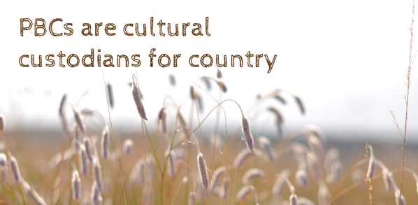 PBCs are cultural custodians for Country